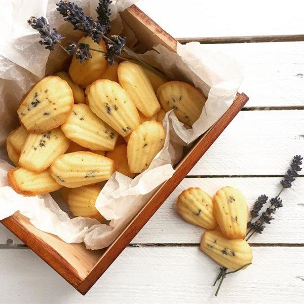 Levandulové madlenky